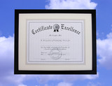 certificate of excellence poster