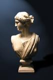 statue of a roman goddess poster