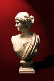 statue bust of a roman goddess poster