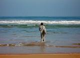 surfista entrando al mar poster