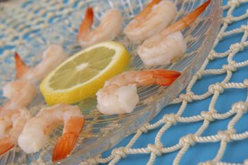 boiled shrimp on blue