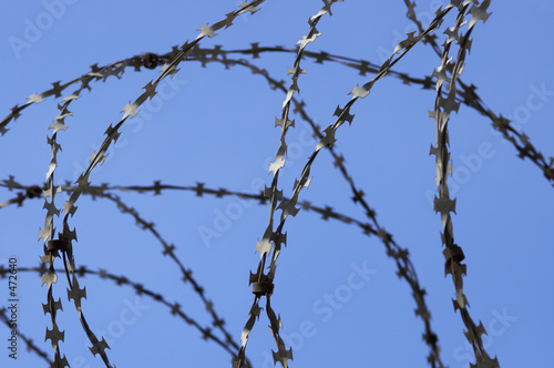 barbed wire and sky