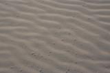 beach sand poster
