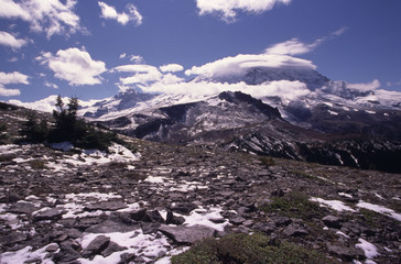 mount rainier national park with snow