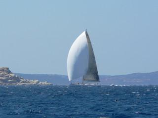 regatta in sardinia
