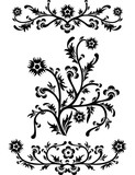 scroll, cartouche, decor poster