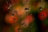 rain drops poster