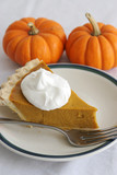 pumpkin pie slice - vertical