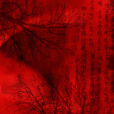 Fototapety chineese red background with signs