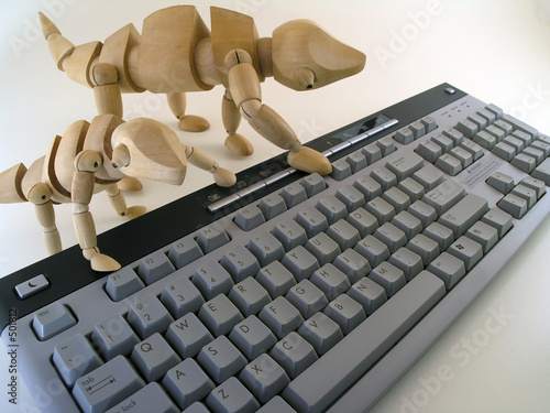 chameleons on keyboard