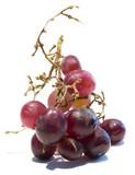 fresh berrys poster
