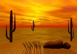 beautiful sunset in desert