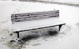 icy bench in winter park poster