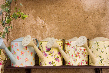 decorative watering cans
