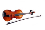 isolated violin and bow. poster
