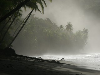 view of the beach in punta banco at dawn