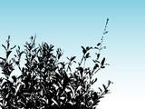 bush silhouette poster