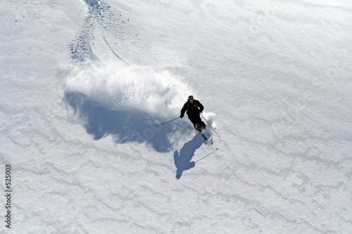 Leinwanddruck Bild ski poudreuse