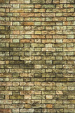 old brick wall background poster