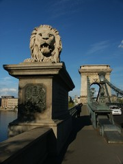 stone lion budapest chain bridge