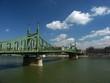 liberty bridge and danube