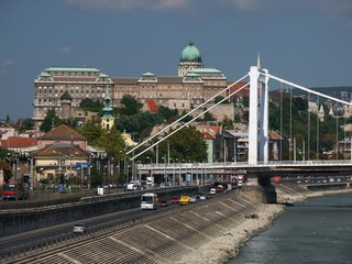 buda castle and elizabeth bridge