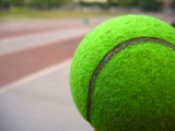 closeup of a tennis ball poster