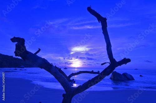 Leinwanddruck Bild seychelles praslin
