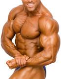 bodybuilder isolated - 543696