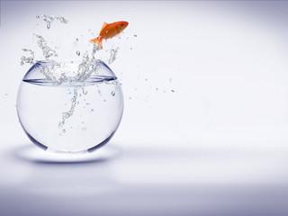 poisson rouge sautant d'un aquarium