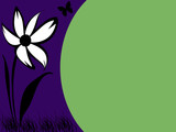 flower #7 blank postcard poster