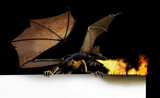 dragon burning sign - on black poster
