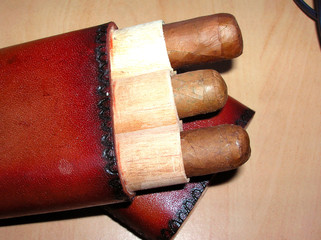 cigars in case