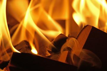 flames #42