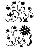 scroll, ornament poster