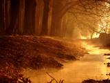 Fototapete Landschaft - Ray - Allgemein