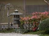 japanese garden with lantern poster