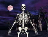 skeleton in front of haunted house poster