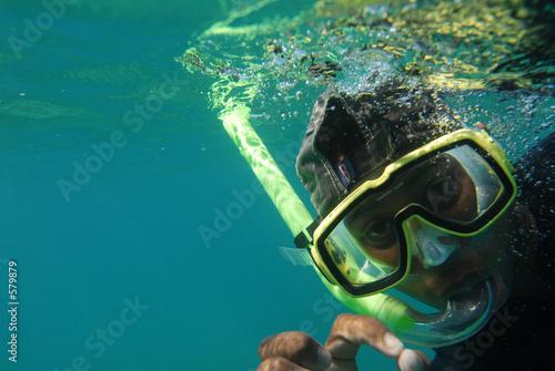 diver/plongeur - 579879