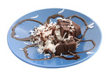 chocolate & coconut dessert isolated poster