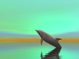 surreal dolphin poster