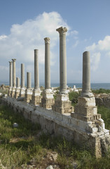 ancient columns of tyre, lebanon