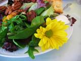 food - salad poster