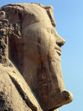 sphinx of memphis, egypt