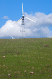 sheep on a hillside poster