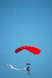 skydiver, vertical composition poster