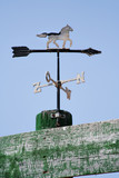 weather vane with french directions poster
