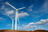 wind turbines farm - Fine Art prints