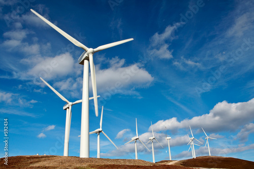 canvas print picture wind turbines farm