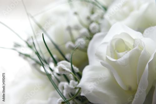 Foto op Plexiglas Roses white wedding